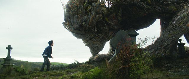 4_screen_film_reviews_a_monster_calls_courtesy_of_focus_features.jpe