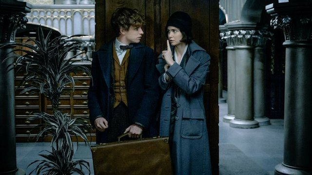 Movie Review Fantastic Beasts And Where To Find Them Is A Promising Start For A New Rowling Franchise Indy Week