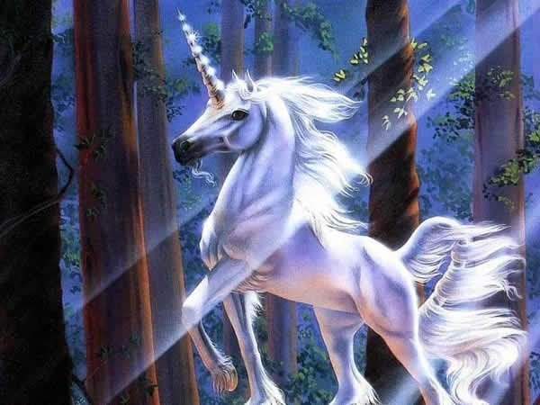 unicorn.jpe
