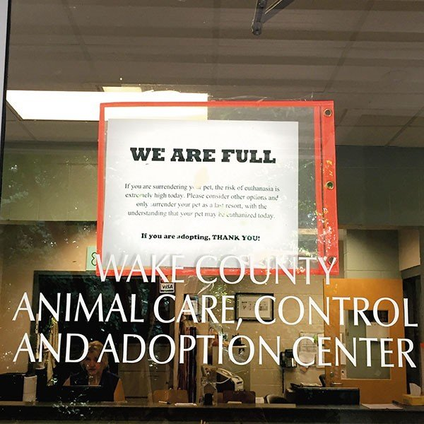 animal-shelter-sign.jpe
