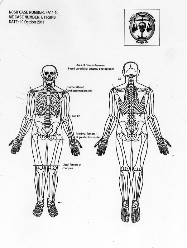 A national expert in human remains, Ann Ross used cutting