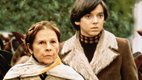 1339387341-harold-and-maude-original.jpe