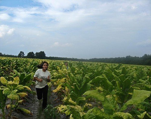 Photo taken by a North Carolina farmworker youth.