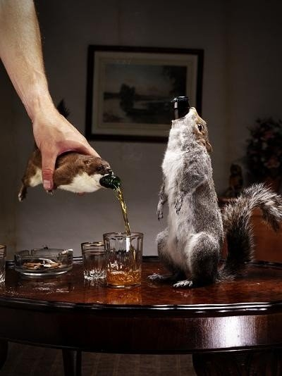 brewdog_taxidermy211_534.jpe