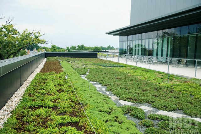 unc_sustainable_campus_01_dla.jpe