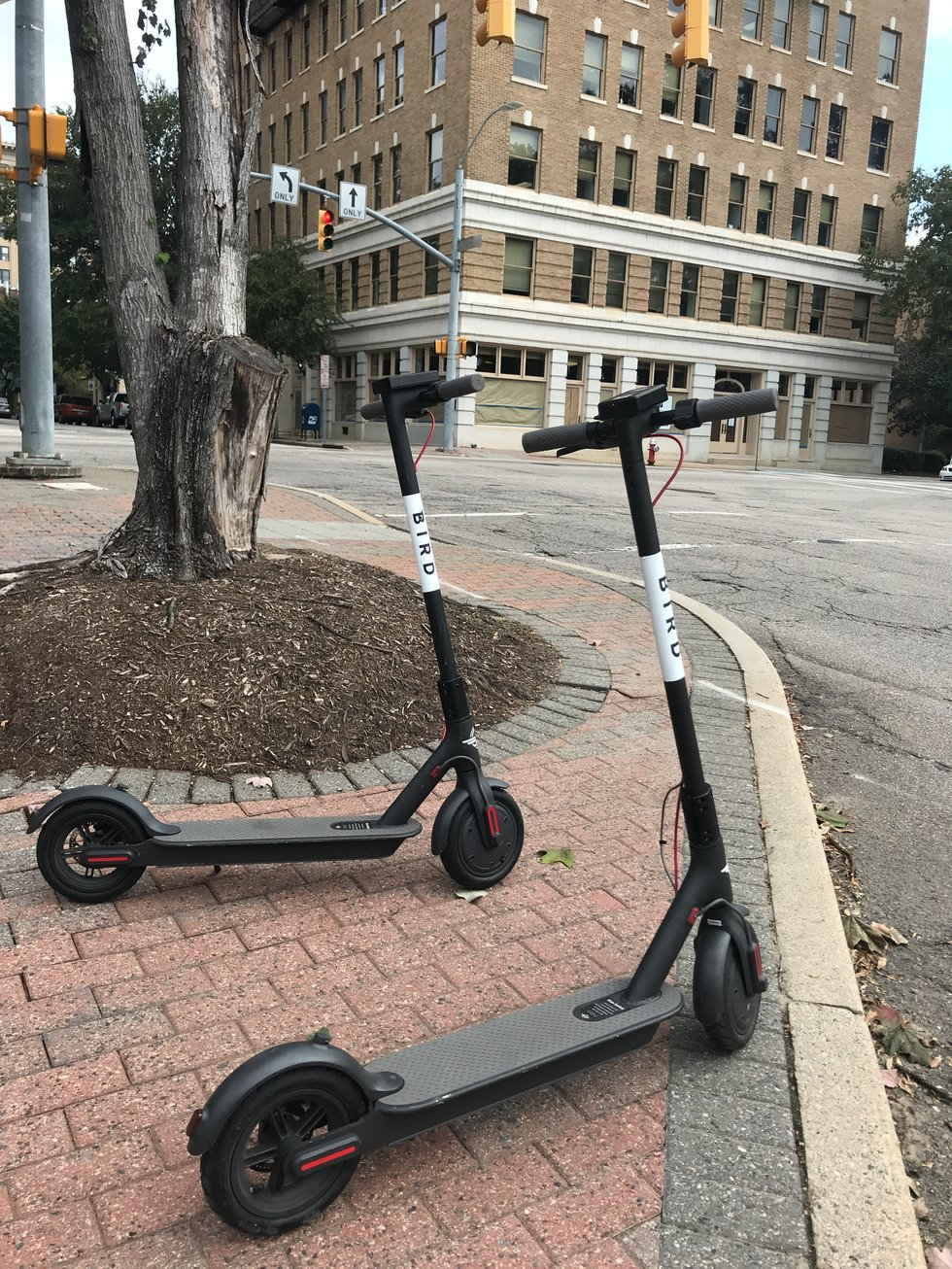 Bird scooters parked in Raleigh