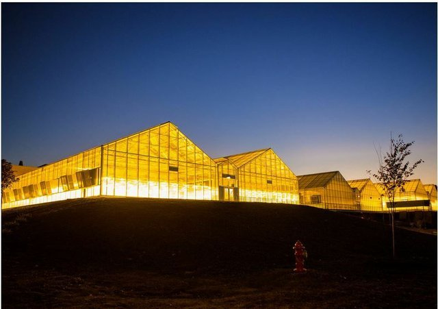 tthe-greenhouse-at-research-triangle-park-rtp-nc-is-a-major-hub-for.jpg