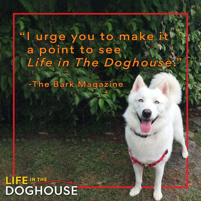 litdh-bark-magazine-press-quote-dog-png.png