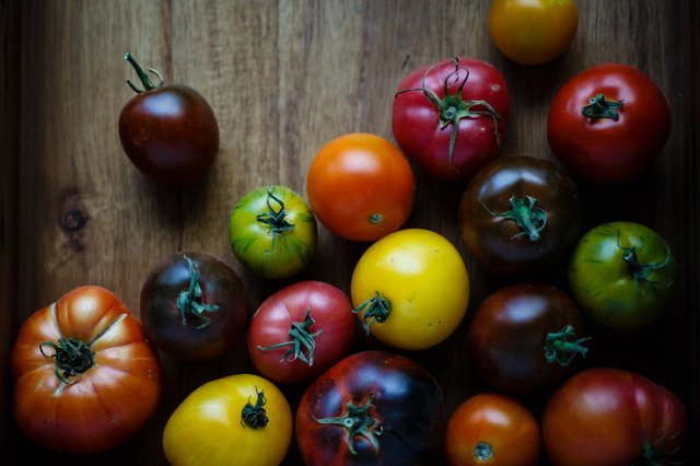 tomato-season-recipes-summer-harvest.jpg