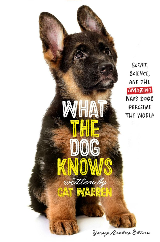 what-the-dog-knows-young-readers-edition-9781534428140_hr.jpg
