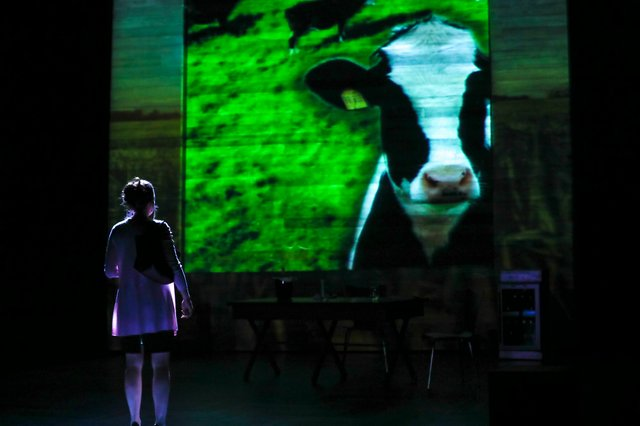 01_Claire Karpen as Allie in DAIRYLAND by Heidi Armbruster_Directed by Vivienne Benesch_HuthPhoto.jpg