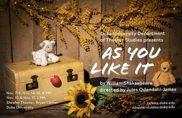 as you like it POSTER.jpg