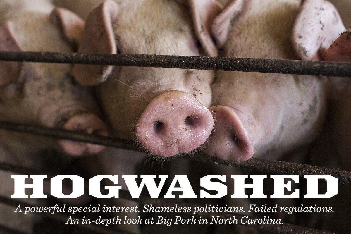 buy online 9fa41 82460 Hogwashed, Part 1  Hundreds of Poor, Mostly African-American Residents of  Eastern North Carolina Say Big Pork Is Making Their Lives Miserable - INDY  Week