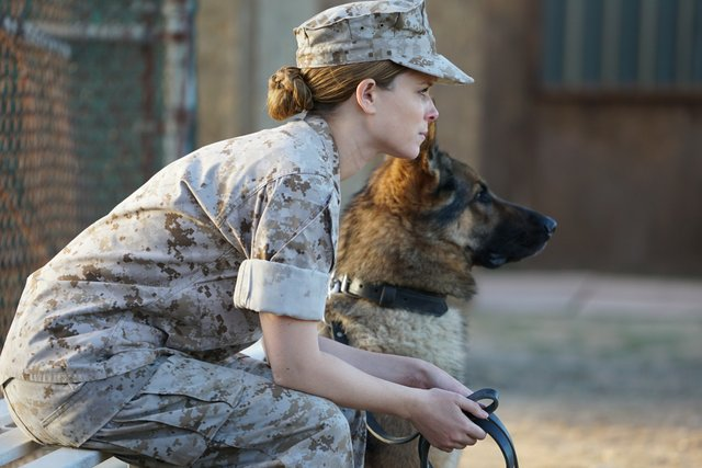 megan-leavey-ml_05107_rgb.jpe